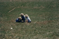Amish Boys Playing in a Field